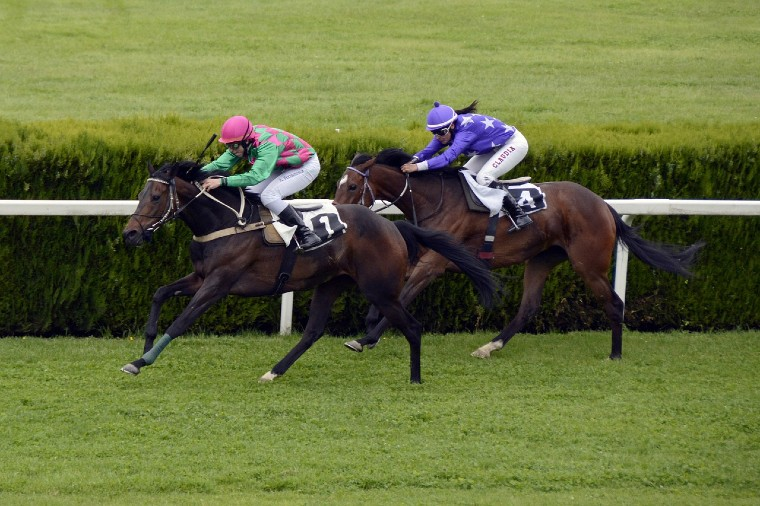 Horse Betting Alternatives